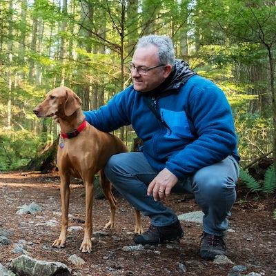 Mature Hiking Man Holding Vizsla Dog in Sunlit For